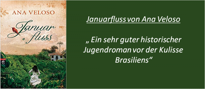 Januarfluss - Rezension