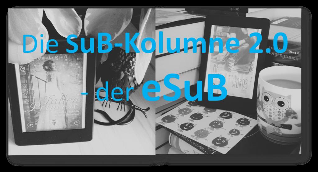 Die SuB-Kolumne 2.0 - der eSuB